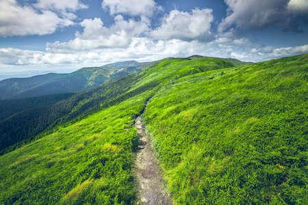zomerlandschap. bergpad op de blauwe hemelachtergrond. Panorama