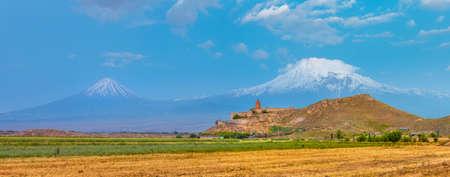Grape field in Ararat valley. View of Khor Virap and Mount Ararat Stock Photo