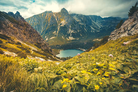 Magnificent landscape. Crystal clear lake surrounded by the mighty Tatra Mountains in Slovakia. Blooming meadows and wild forests. Calm environment. Beauty of virgin nature.