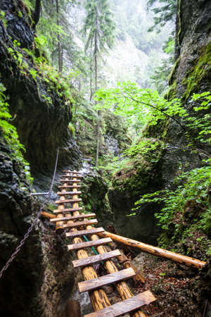 Abandoned old wooden bridge with backup metal chain in the deep wild mingled rain forest. Outdoor extreme activities in the Tatras Mountains in Slovakia. Travel, sports, holidays, recreation, nature Stock Photo