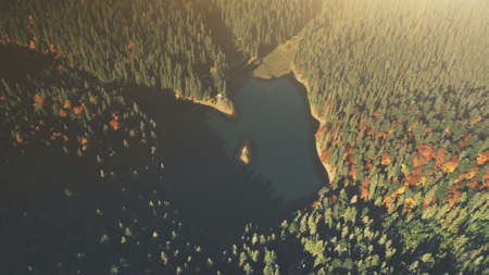 High Mountain Lake Sunrise Wood Scene Aerial View. Dense Coniferous Forest Wildlife Habitat Landscape. Sunlight Beam Tranquil Hill Slope Natural Environment Concept Drone Flight