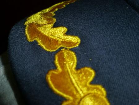visor: Oak Leaf Visor Cap  Stock Photo
