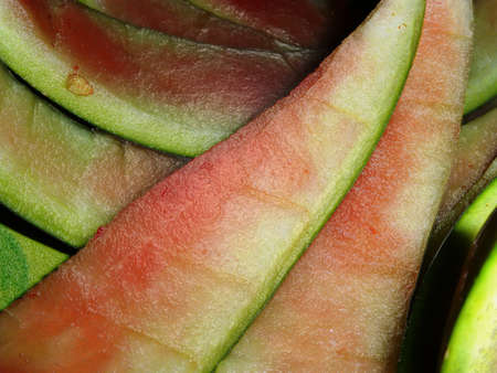filtered watermelon rind photo