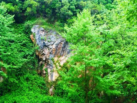 Höhleneingang im Wald Standard-Bild - 62500239