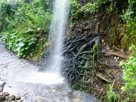 Wasserfall Standard-Bild - 62545622