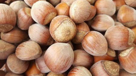 up: Close up of hazelnuts