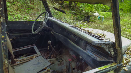 Closeup of an old abandoned car in forest. Istanbul, Turkey - 18 October, 2015. Reklamní fotografie