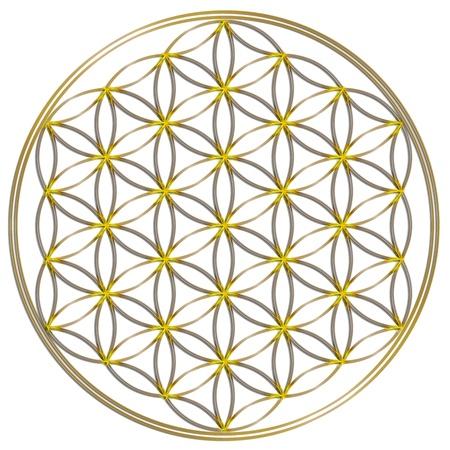 Flower Of Live Golden Shine