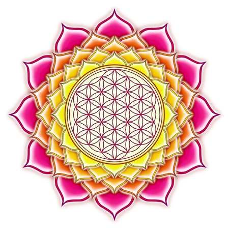 Flower Of Live Lotus Mandala photo