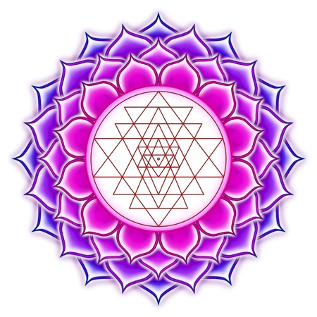 Shree Yantra Mandala Lotus Stock Photo - 20886914