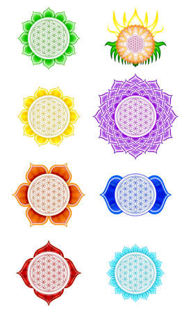 mandalas: Flower Of Live Chakras