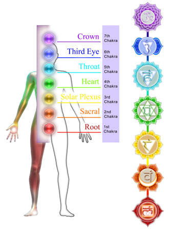 The Seven Chakras Stock Photo - 21031060