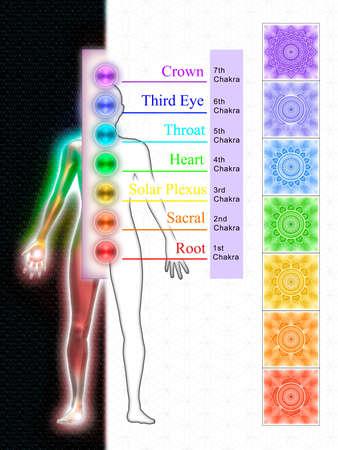 chakras: Los siete chakras principales