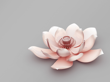 sacral symbol: Lotus Flower Stock Photo