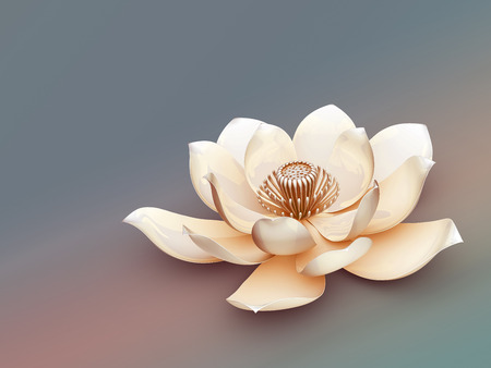 spiritual: Lotus Flower Stock Photo