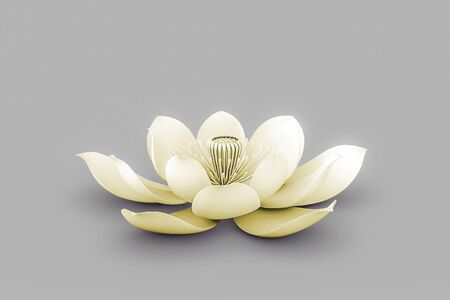 Lotus Flower In Chakra ColorYellow