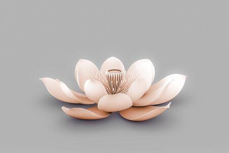 Lotus Flower In Chakra Color Orange