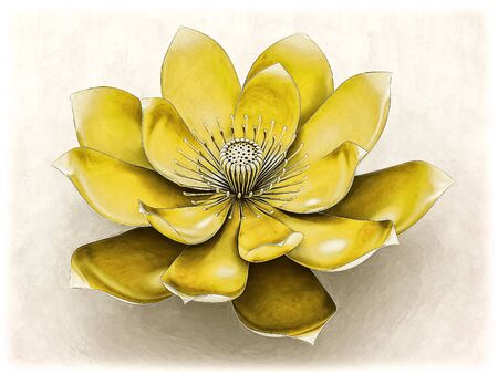 chakra: Lotus Flower With Chakra Color Yellow Stock Photo