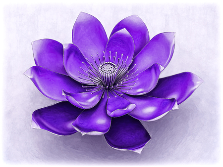 Lotus Flower With Chakra Color Purple Stock Photo