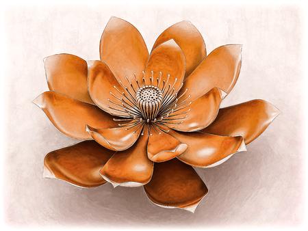 Lotus Flower With Chakra Color Orange Stock Photo
