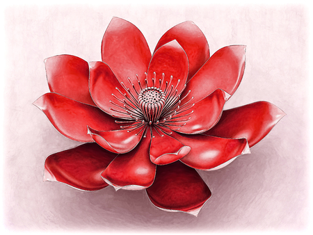 Lotus Flower With Chakra Color Red