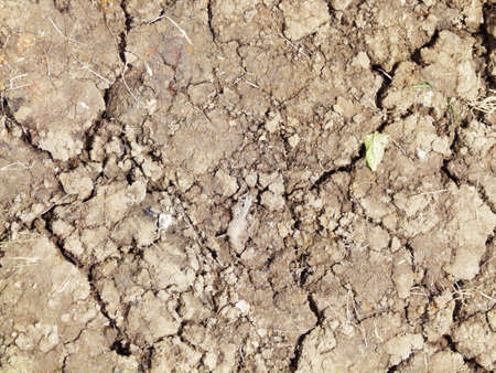 Soil cracks Texture Stock Photo
