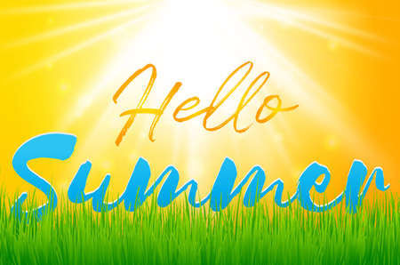 Hello Summer Holiday background with green grass. Vector background for banner,poster,flyer,cover, brochure.