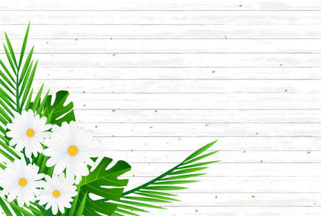 Creative natural layout tropical flowers and green leaves on background texture.Nature concept .Vector illustration