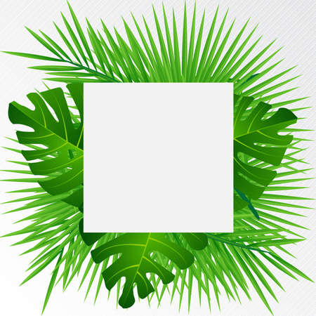 Creative layout tropical flowers and green leaves with paper card  Nature concept. Vector illustration