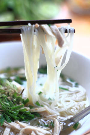 Thin noodles Thailand Stock Photo - 25044055