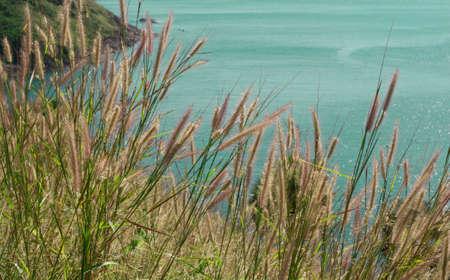 phuket: phuket scenic Stock Photo