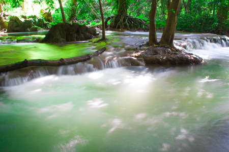trees photography: Andaman Thailand outdoor photography of waterfall in rain jungle forest. Trees, PHUKET,KRABI,PHANGKHA Stock Photo