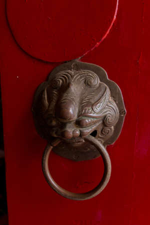 Lion on the red door photo