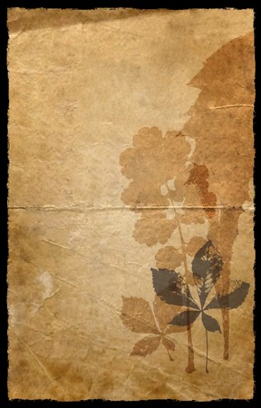 A grunge old paper background with floral sillhouette