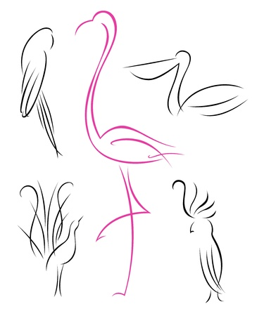 A set of five birds drawn with curves