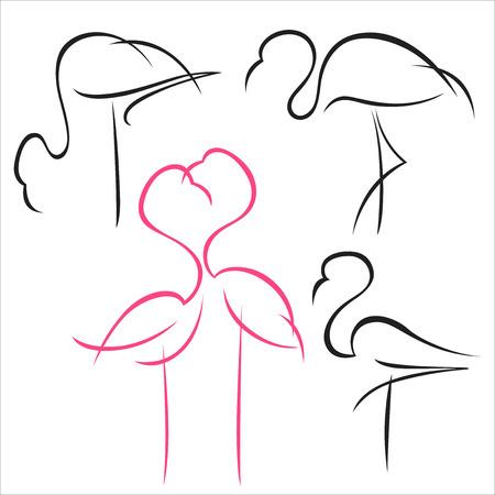 A set of flamingo images Vector