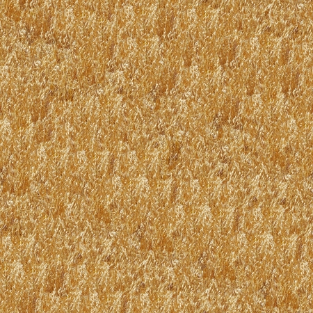 Dry Grass Seamless Pattern - this image can be composed like tiles endlessly without visible lines between parts