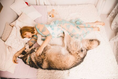 charming plus size girl with red hair in a nightgown posing with her large dog, a Malamute best friend in white bed in the bedroom Zdjęcie Seryjne