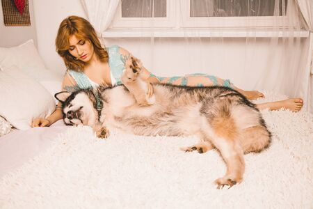 charming plus size girl with red hair in a nightgown posing with her large dog, a Malamute best friend in white bed in the bedroom Zdjęcie Seryjne - 133819612