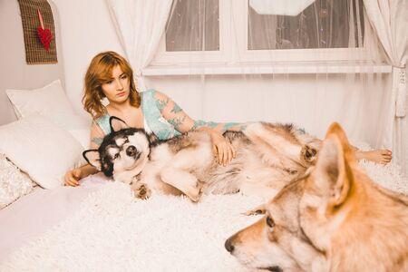 charming plus size girl with red hair in a nightgown posing with her large 2 dogs best friends in white bed in the bedroom