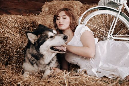 adorable plus size caucasian girl with red hair in a white summer dress poses with her big dog Malamute best friend on a haystack in a barn Zdjęcie Seryjne - 133820319