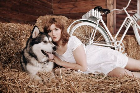adorable plus size caucasian girl with red hair in a white summer dress poses with her big dog Malamute best friend on a haystack in a barn Zdjęcie Seryjne - 133820134