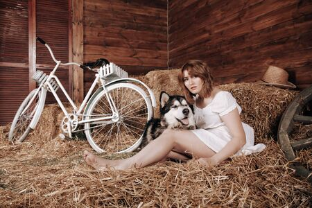 adorable plus size caucasian girl with red hair in a white summer dress poses with her big dog Malamute best friend on a haystack in a barn Zdjęcie Seryjne - 133820466