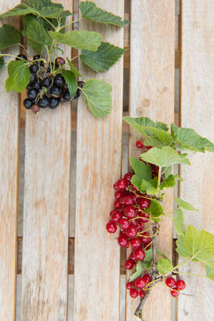 currants: Red currants on the table Stock Photo