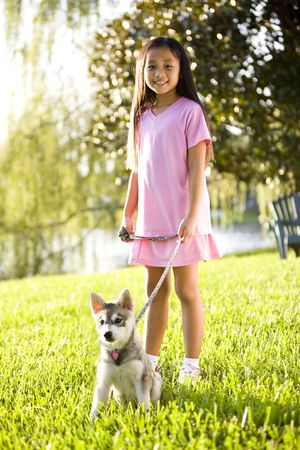 Pretty young Asian girl walking Alaskan Klee Kai puppy on leash on grass photo