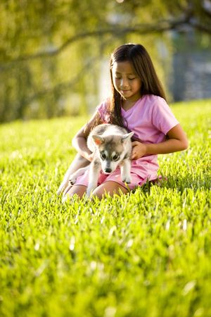 kneeling: Pretty young Asian girl holding Alaskan Klee Kai puppy sitting on grass Stock Photo
