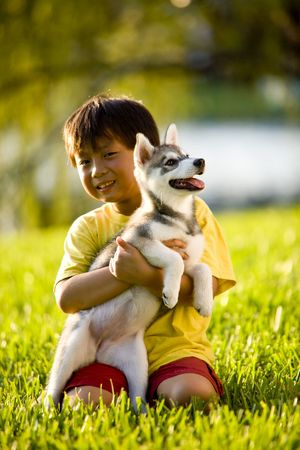 pet care: Young Asian boy holding Alaskan Klee Kai puppy sitting on grass