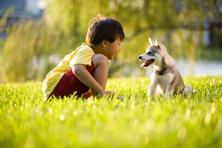 アジアの若い男の子を草の上に座っているアラスカン ・ クリー ・ カイ子犬と遊ぶ 写真素材 - 6865021