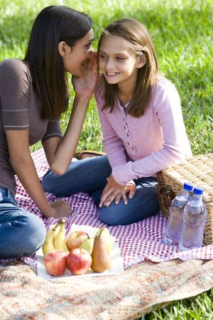 Teenage girl whispering to younger sister enjoying  picnic in the park photo