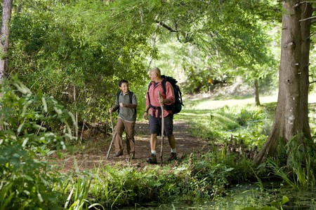 Father and 10 year old son hiking on trail in woods and talking photo